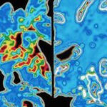 Alzheimer's 'early signs timeline developed'