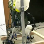 'Most realistic' robot legs developed